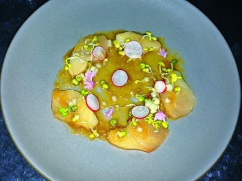 Hamachi Sashimi, Galbi Vinagirette, Fuji Apple, Radish, Radish Sprouts