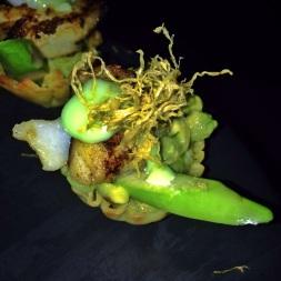 Red Farm - Black Seabass, Avocado Tart