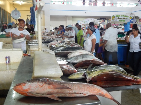Giant Fish line stands in the Mercado de Mariscos